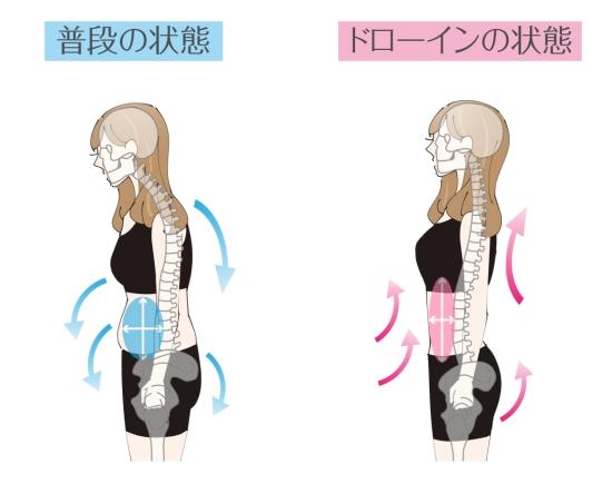 くびれ 作り方 腹斜筋 効果的 筋トレ